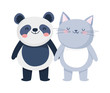 little cat and panda cartoon character on white background