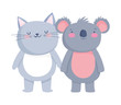 little cat and koala cartoon character on white background