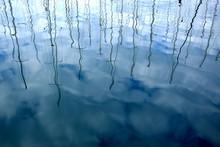 Reflections Of Sailing Boats M...