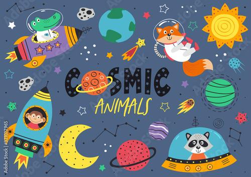 Photo set of space animals