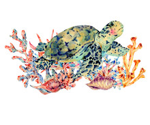 Watercolor Vintage Sea Life Na...