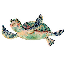 Watercolor Vintage Sea Turtle Natural Greeting Card
