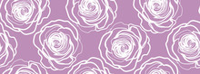 Roses In Purple Background - S...