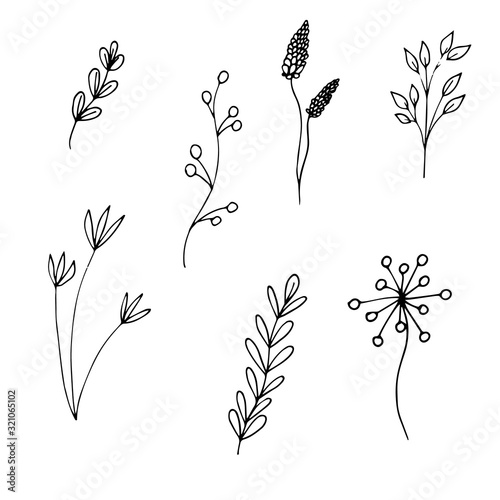 Fototapety, obrazy: Set of flowers and branches black outline drawing. Isolated objects on a white background. Vector stock illustration.