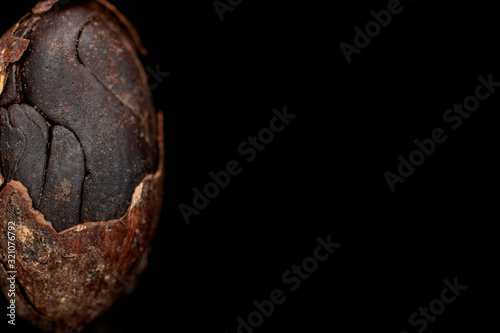 One whole fresh brown cocoa bean with cracked husk isolated on black glass Wallpaper Mural