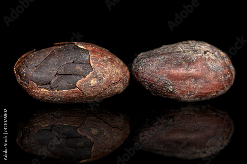Photo Group of two whole fresh brown cocoa bean isolated on black glass