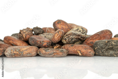 Photo Lot of whole fresh brown cocoa bean stack isolated on white background