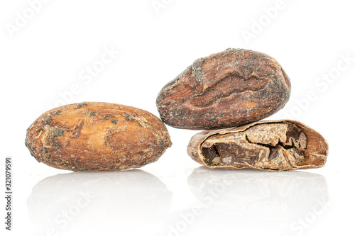 Photo Group of two whole one half of fresh brown cocoa bean isolated on white backgrou