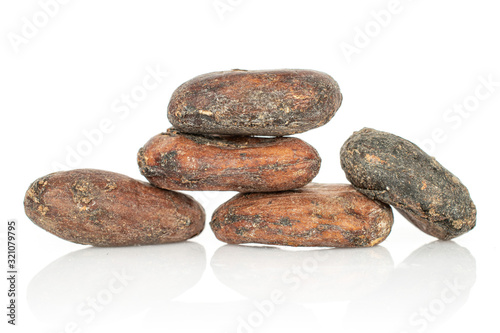 Photo Group of five whole fresh brown cocoa bean isolated on white background