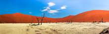 Panorama Of Red Dunes And Dead...