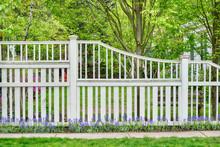 White Wooden Fence, Blue Flowe...
