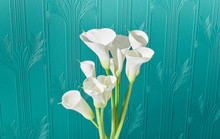 Calla Lilly Bouquet Against Ar...
