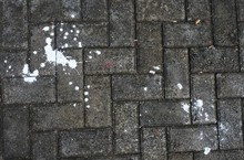 White Stain On The Paving Floo...