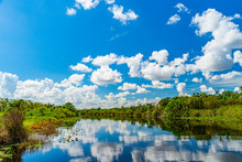 Everglades Wetland In Florida,...