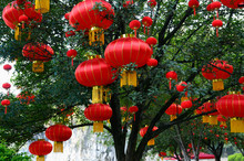 Red National Day Lanterns In T...