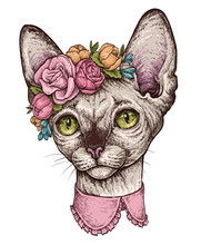 Hand Drawn Portrait Of Cute Sphynx Cat With A Wreath On Head. Vector Illustration Isolated On White