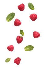 Fresh Raspberries Levitation.