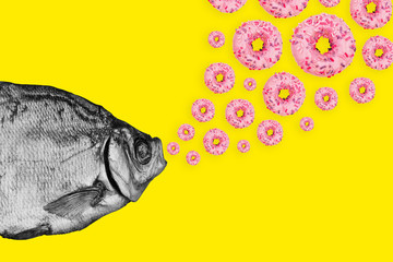 Fototapeta Do jadalni Concept fish and donuts on a colored background. Modern art collage.