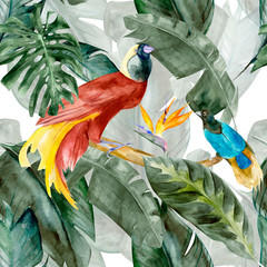 Panel Szklany Inspiracje na wiosnę Tropical birds on the background exotic green flower hibiscus and monstera palm leaves, banana leaf. Print summer floral plant. Nature animals wallpaper. Seamless watercolor jungle pattern textile.