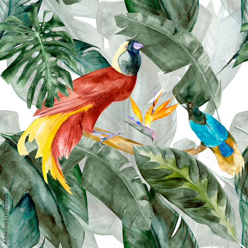 Obraz Tropicbirds on the background exotic green flower hibiscus and monstera palm leaves, banana leaf. Print summer floral plant. Nature animals wallpaper. Seamless watercolor jungle pattern textile. - fototapety do salonu