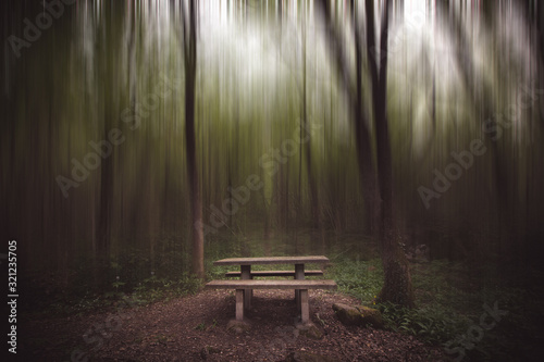 Mesa de picnic dentro del bosque difuminado Canvas Print