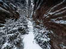 Winterwanderung Zum Pfaffenste...