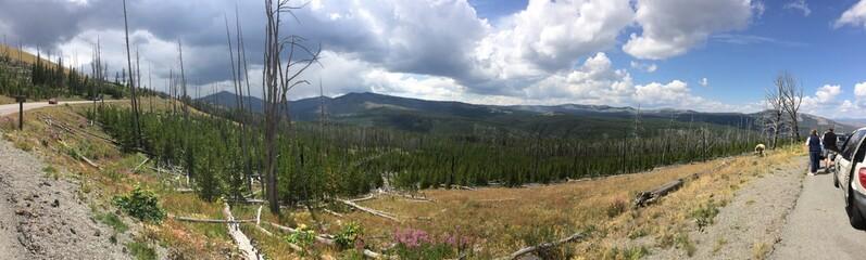 Heart lake trail, Yellowstone