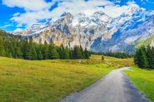 Bernese Alps Snow Peaks And Gr...