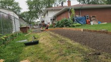 Home Gardening - Man In T-shirt Wearing Shorts And Boots Working On His New Garden Bed Border Or Fencing And Preparing New Vegetable Garden Area.