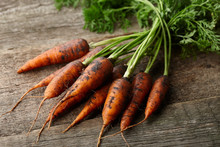 Fresh Carrots With Greens On O...