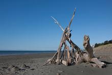 Tangimoana Beach New Zealand. ...