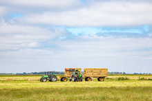 Harvesting Silage Bales Of Com...