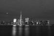 Black and White Lower Manhattan New York City Skyline at Night