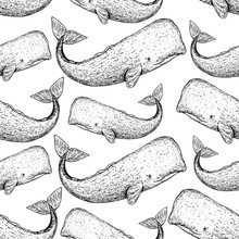 Sperm Whale Seamless Pattern. ...