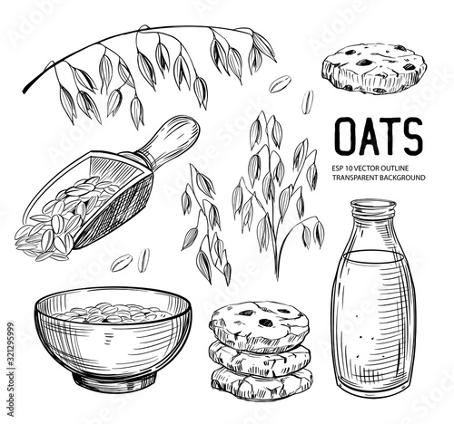 Obraz na płótnie Set of oats objects