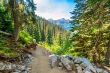Beautiful Mountain Trail View ...