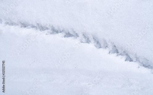 Fototapeta Mark of a trekking pole on the snow. hiking background obraz