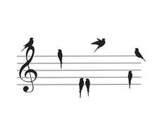 Violin Key And Birds Silhouett...