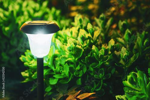 Photo Decorative Small Solar Garden Light, Lantern In Flower Bed