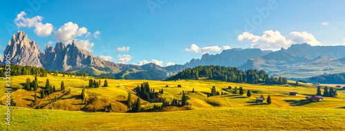 Fotografie, Tablou Alpe di Siusi or Seiser Alm and Sassolungo mountain, Dolomites Alps, Italy