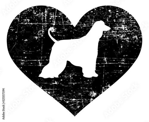 Photo Afghan Hound in heart black and white