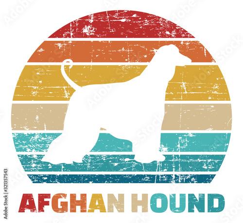 Afghan Hound vintage color Wallpaper Mural