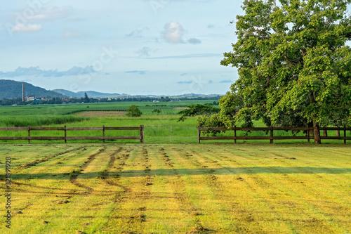 A Country Acreage Landscape Canvas Print