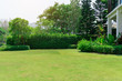 Leinwandbild Motiv Fresh green grass smooth lawn as a carpet with curve form of bush, trees on the background, good maintenance lanscapes in a garden under cloudy sky and morning sunlight