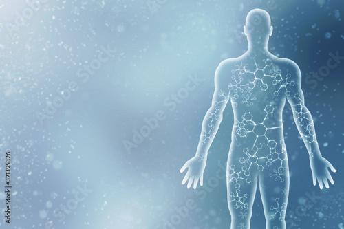 Cuadros en Lienzo 2d illustration Human Male Muscle Body