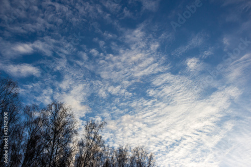 Altostratus clouds on a blue sky Wallpaper Mural