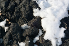 Brown, Black Ground Surface With Snow. Close Up Natural Background.