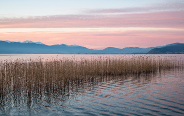 Fototapeta Optyczne powiększenie A series of lake landscapes. With reeds. The delicate pink colors of a sunset are reflected in the water. Ohrid Lake, Northern Macedonia.