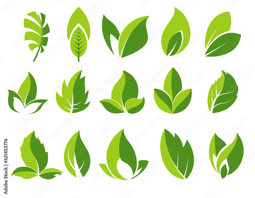 Fototapeta Green leaf and leaves abstract icons set