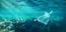 Ocean Pollution Concept, Plast...